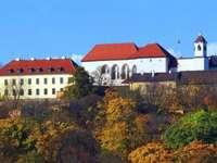 Brno stad i Tjeckien