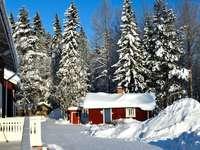 червено-бяла къща близо до зелени дървета, покрити със сняг