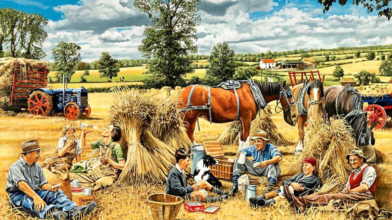 Συλλογή σιταριού - Μεσημεριανό γεύμα (12×7)