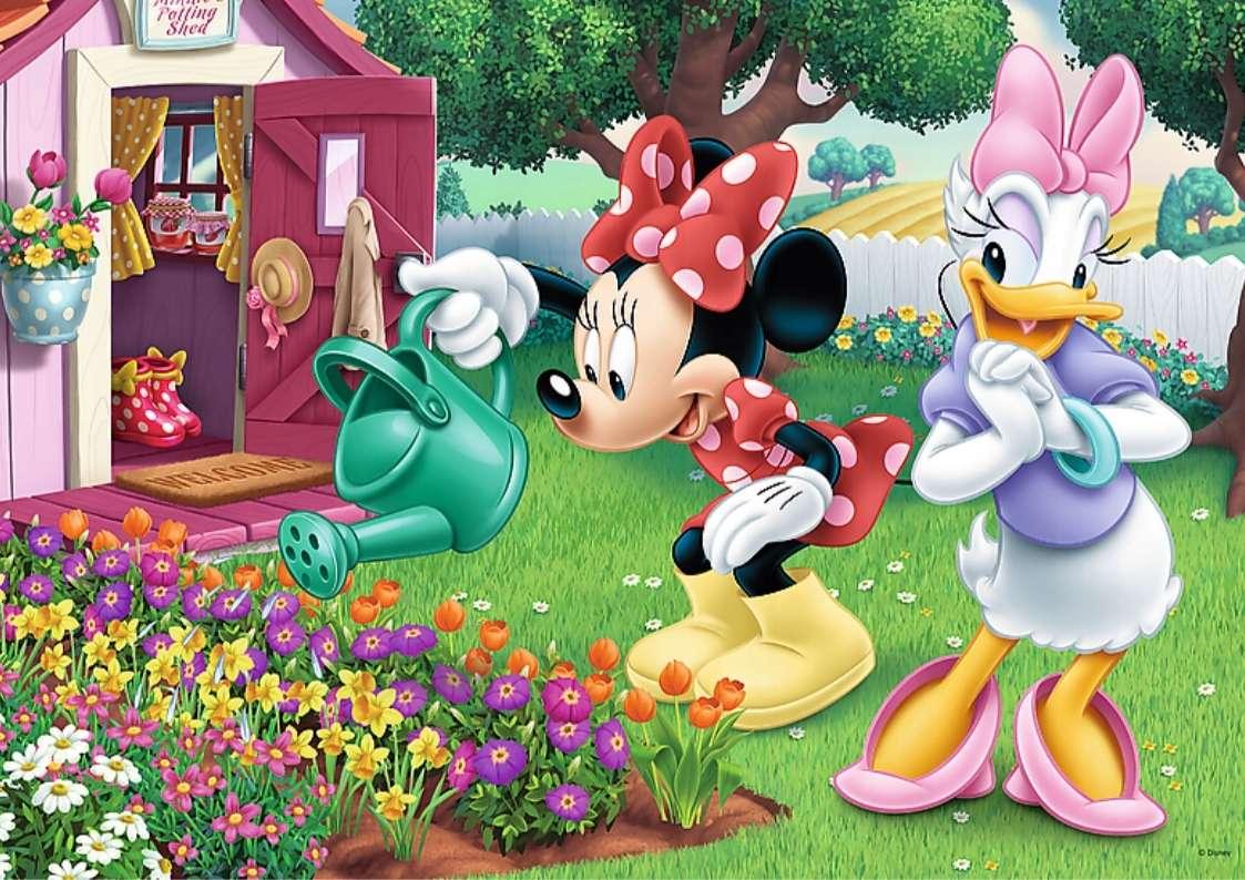 Zahrada Mickey Mouse - Mickeyho zahradu napadl hmyz. Používá insekticidy, aby se jich zbavil, ale nakonec skončí. Rozhodne se jich vytvořit více. Když se vrátí do zahrady, zjistí, že je ucpané stříkací čerp (4×3)