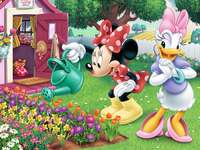 Jardin de Mickey Mouse