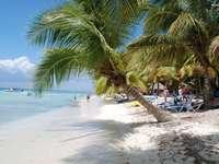 praia nos trópicos