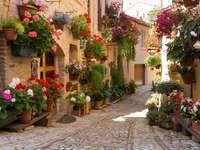 uliczka w kwiatach