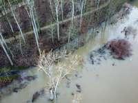 χιονισμένα γυμνά δέντρα κατά τη διάρκεια της ημέρας