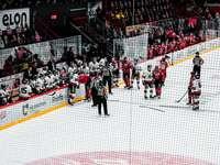 gente en el estadio de hockey sobre hielo