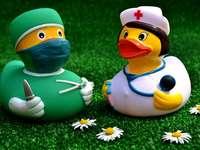 Läkare ankor