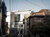 бяла и кафява бетонна сграда през деня