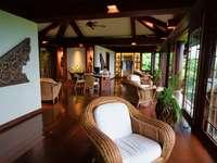 brązowy fotel wiklinowy w pobliżu zielonej rośliny doniczkowej