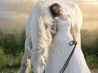 Lány fehér ruhában, gyönyörű szürke lóval!