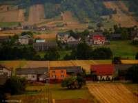 Полско село