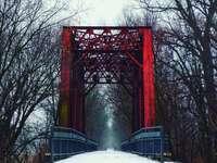 ponte vermelha sobre solo coberto de neve