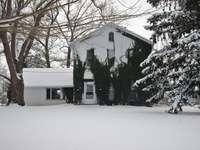 бяла и зелена къща близо до кафяво дърво през деня