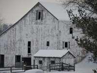 бяла и кафява дървена къща близо до бяла кола през деня