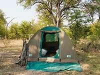 zöld és szürke sátor zöld füves területen napközben