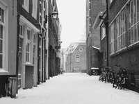 fotografie în tonuri de gri a drumului acoperit de zăpadă între clădiri