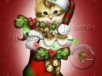 Dobrou noc o Vánocích ??