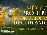 Quebra-cabeça do sistema aduaneiro mexicano