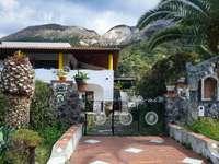 бяла и кафява бетонна къща близо до зелени палми