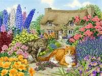 Пролетни вилни котки