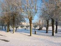 zimowy kemping