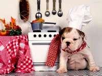 perrito en la cocina