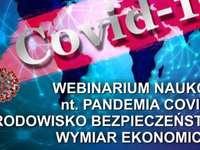 O quebra-cabeça da pandemia do coronavírus