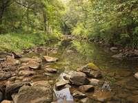 Rocas marrones en el río durante el día