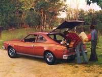 1976 AMC Hornet X Хечбек