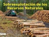 természetes erőforrások
