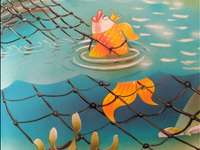 peștișorul de aur puzzle