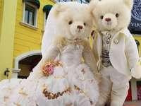 gente vestida como osos de peluche