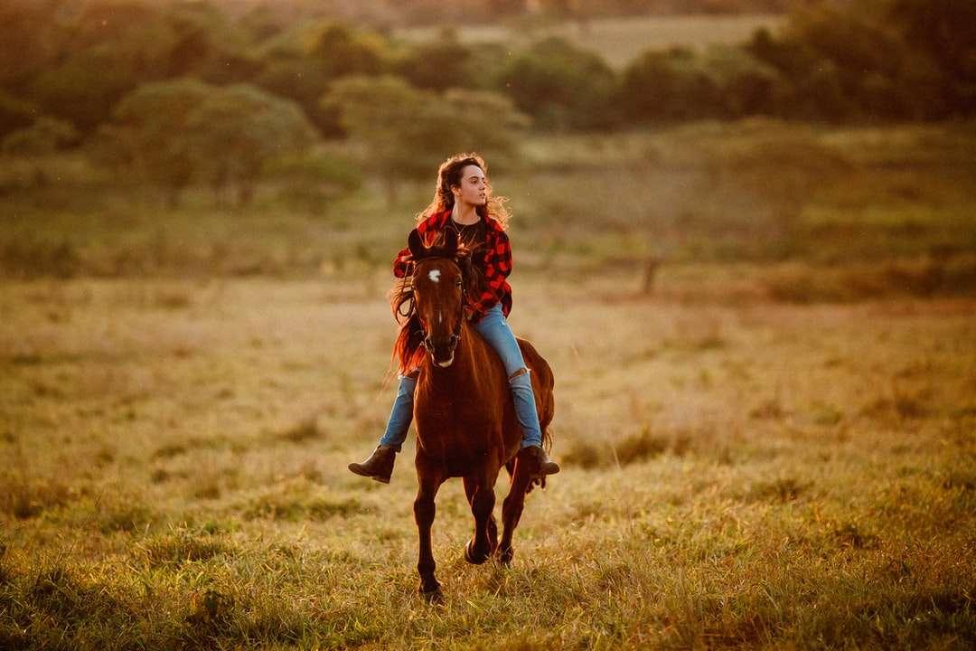 garota de jaqueta vermelha e calça marrom montando cavalo marrom