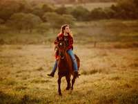 girl in red jacket and brown pants riding brown horse