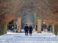 fekete kabátos férfi állt a hóval borított földön