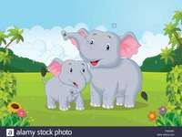 Ο δάσκαλος Aboutorabi μαθαίνει ελέφαντα άγριων ζώων