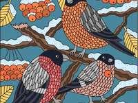 Sněhové ptáky
