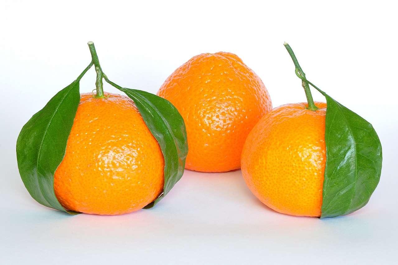 Mandarijn (plant) - Mandarijn (Citrus reticulata Blanco) - een soort vaste plant uit de Rutaceae-familie. Het komt waarschijnlijk uit Zuid-Azië en wordt verbouwd in veel delen van de wereld met een tropisch en subtropis (4×3)