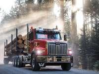 ciężarówka i kłody drzew