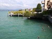 Kaczki nad Lago di Garda