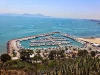 zatoka w tunizie