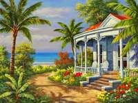 dom, morze, palmy