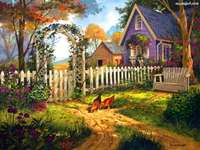 country backyard