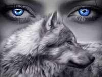 Le regard bleu