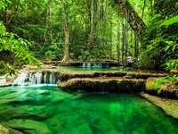 Джунгла, река, водопад, тропици