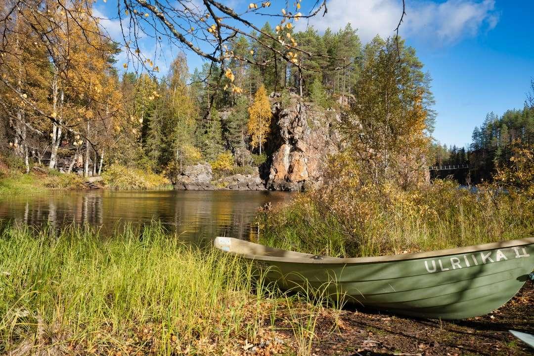 кафяво кану върху зелена трева край езерото през деня пъзел