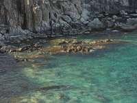 кафява скална формация до водоема през деня