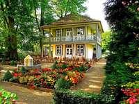 hus, färgglada rabatter
