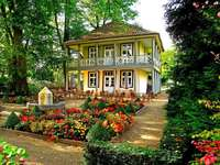 casa, macizos de flores de colores