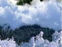 chaloupka uprostřed hor
