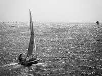 Foto en escala de grises de velero en el mar